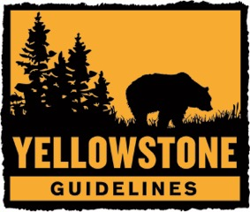 Yellowstone Guides