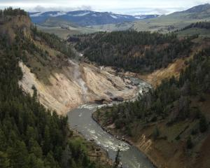 Yellowstone River Montana