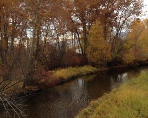Lolo Creek
