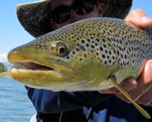 trout fishing Missoula Montana