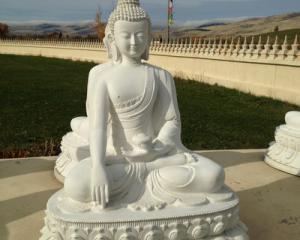 Arlee Montana Buddha