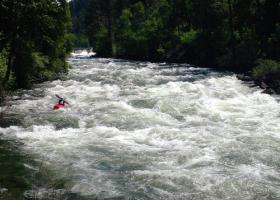 Bigfork Swan River