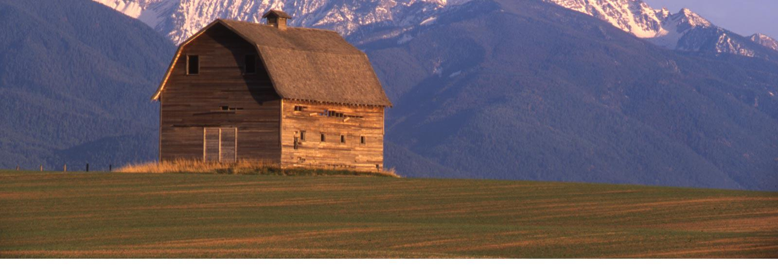 Montana Country Side