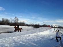 Skijoring in Flathead